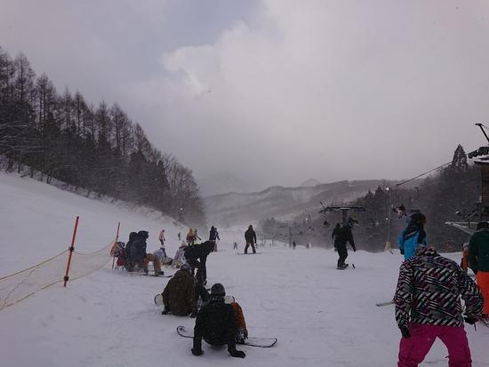 いい雪|水上宝台樹スキー場のクチコミ画像