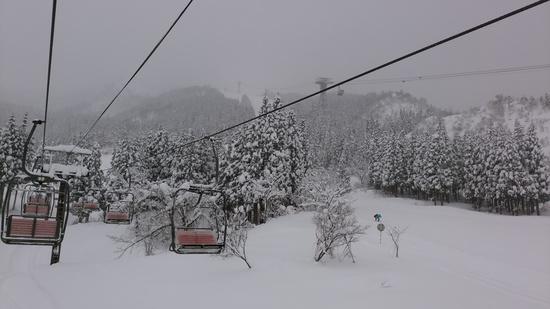 シーズン三回目|六日町八海山スキー場のクチコミ画像