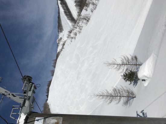 [ワンダーランドかたしなレビューキャンペーン]|オグナほたかスキー場のクチコミ画像