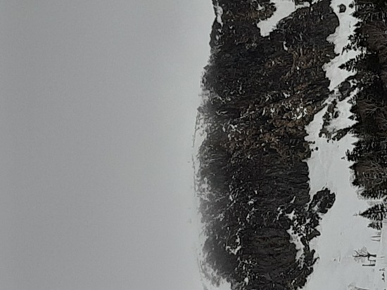 川場のフリーランは最高|川場スキー場のクチコミ画像2