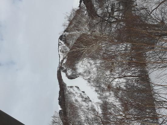 川場のフリーランは最高|川場スキー場のクチコミ画像3