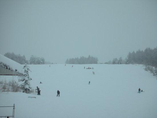 なだらかなスキー場|パルコールつま恋スキーリゾートのクチコミ画像