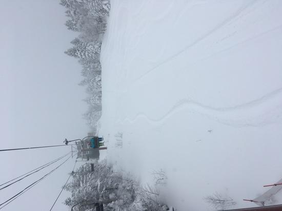 全コースパウダースノー パルコールつま恋スキーリゾートのクチコミ画像2