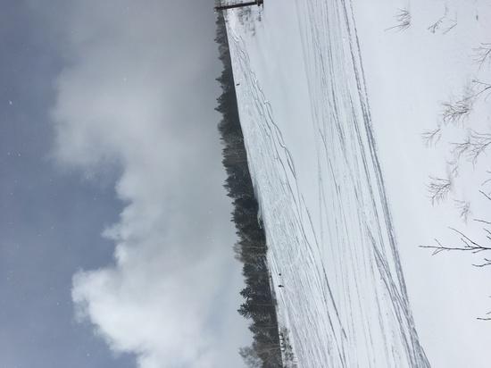 全コースパウダースノー パルコールつま恋スキーリゾートのクチコミ画像3