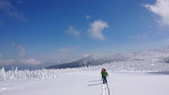 青空とモンスター|みやぎ蔵王スキー場 すみかわスノーパークのクチコミ画像2