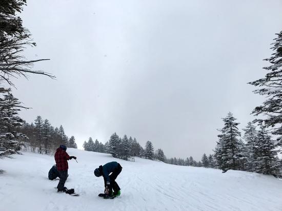 志賀高原 焼額山スキー場のフォトギャラリー3