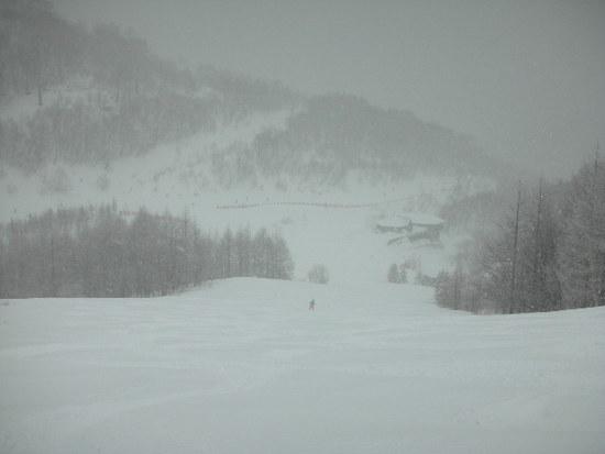 朝から雪|川場スキー場のクチコミ画像