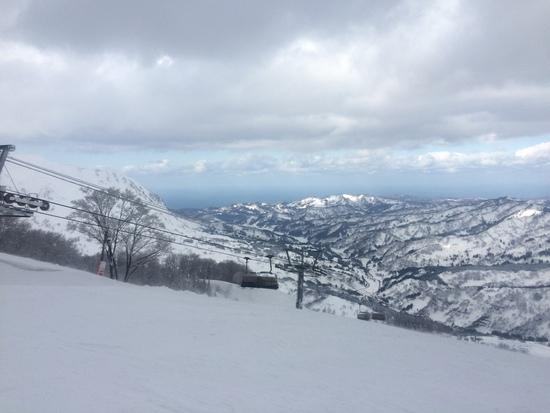 パウダーラン最高!|シャルマン火打スキー場のクチコミ画像