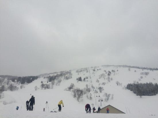パウダーラン最高!|シャルマン火打スキー場のクチコミ画像2
