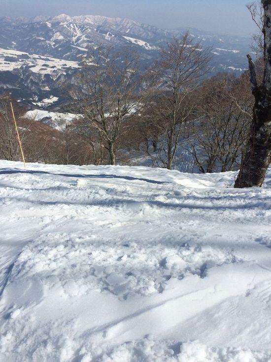 雪の量ばっちり|高鷲スノーパークのクチコミ画像