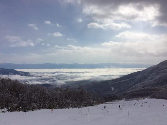 パウダースノー|妙高杉ノ原スキー場のクチコミ画像