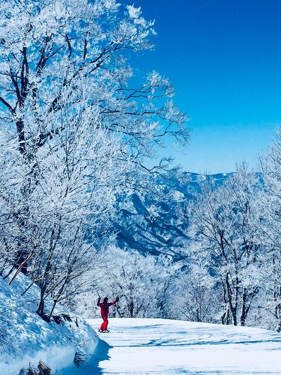 こんな近くのスキー場で目にした「別世界」に感動 会津高原たかつえスキー場のクチコミ画像1