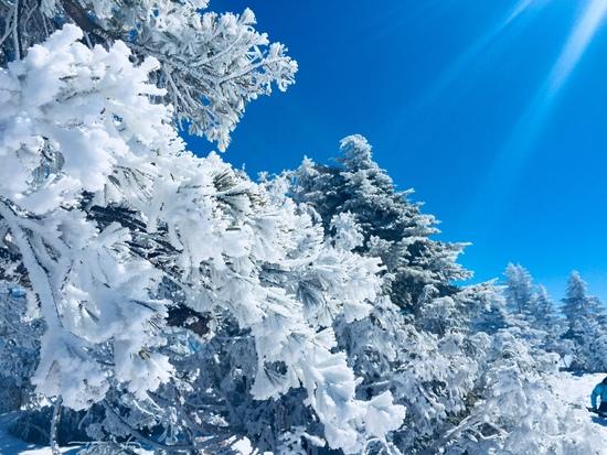 こんな近くのスキー場で目にした「別世界」に感動 会津高原たかつえスキー場のクチコミ画像2