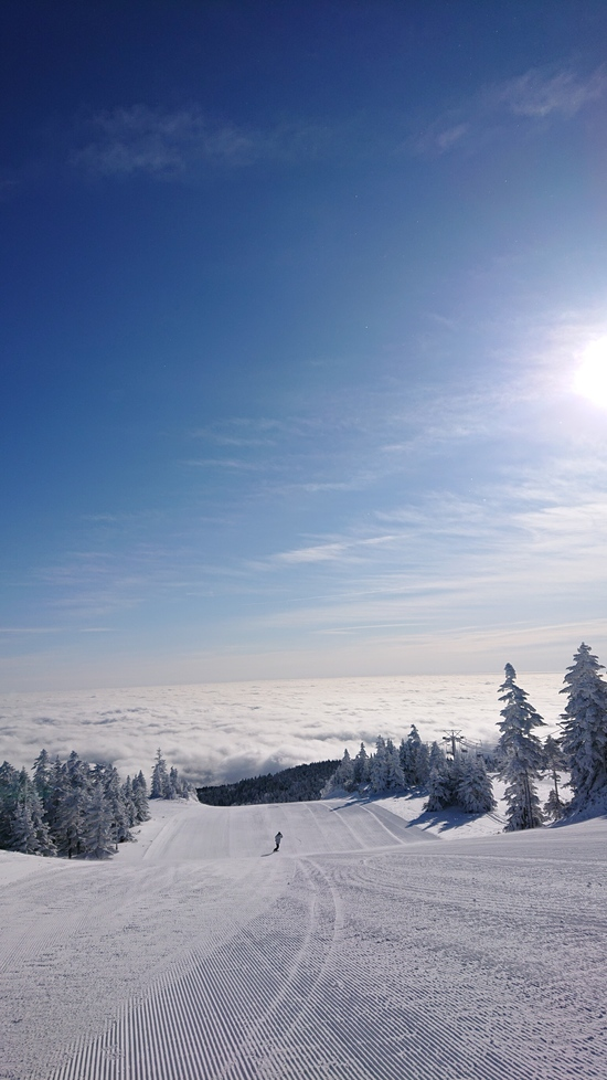 2020信州ツアー 第1章始まる(VOL.4)|志賀高原 熊の湯スキー場のクチコミ画像3