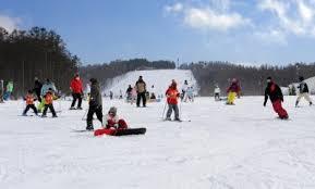家族スキー ハンターマウンテン塩原のクチコミ画像3