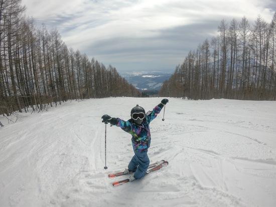 滑り放題(^-^)|妙高杉ノ原スキー場のクチコミ画像