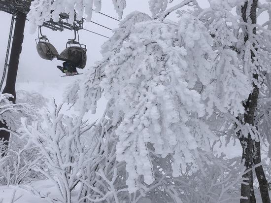 やまびこゲレンデ気持ち良いー!|野沢温泉スキー場のクチコミ画像2