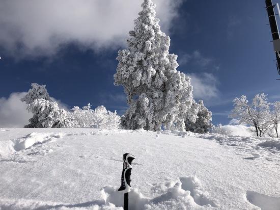やまびこゲレンデ気持ち良いー!|野沢温泉スキー場のクチコミ画像3