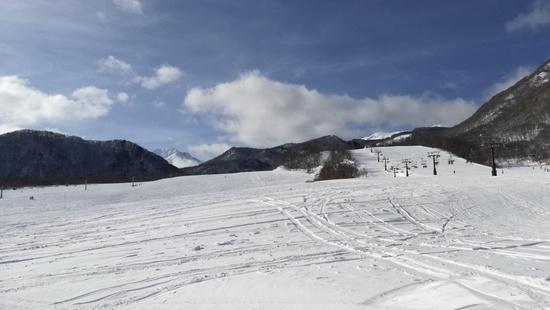 安定の快適さ!|栂池高原スキー場のクチコミ画像