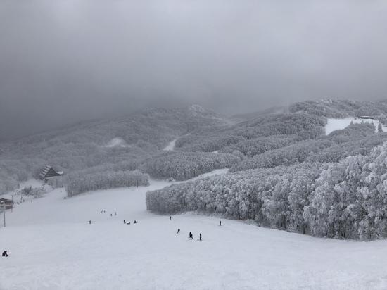 名湯蔵王|蔵王温泉スキー場のクチコミ画像