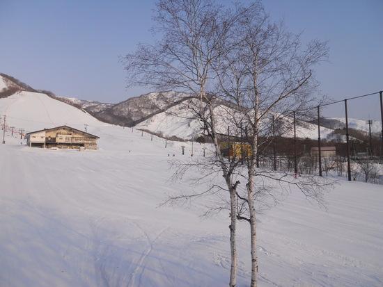 春スキーの陽気|栂池高原スキー場のクチコミ画像