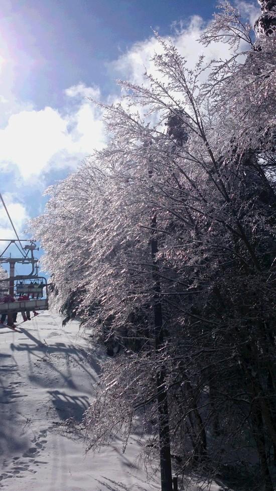 キラキラの樹氷|ふじてんスノーリゾートのクチコミ画像
