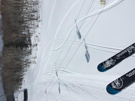 ラストパウ|パルコールつま恋スキーリゾートのクチコミ画像3