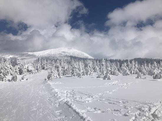 最高のスキー場に行けて感動しました!|蔵王温泉スキー場のクチコミ画像