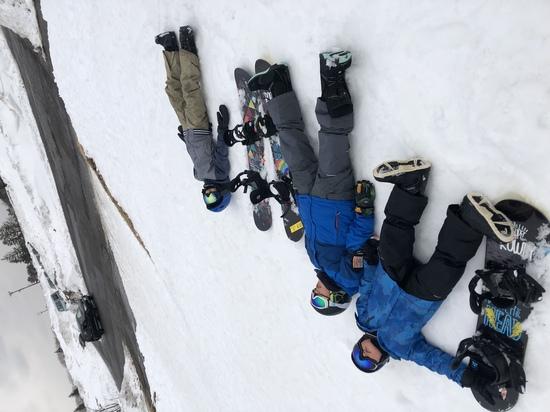 死んだふり|箕輪スキー場のクチコミ画像