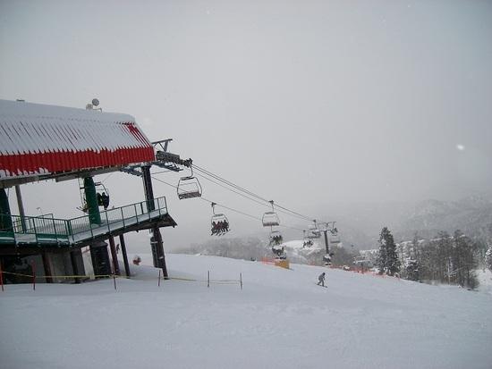 上部は穴場|鷲ヶ岳スキー場のクチコミ画像