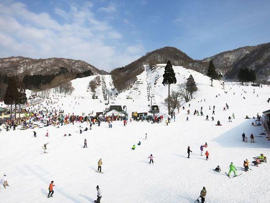 西日本最大斜度|グランスノー奥伊吹(旧名称 奥伊吹スキー場)のクチコミ画像1