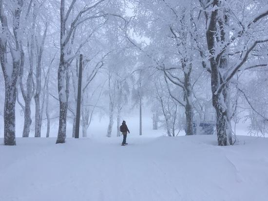 豊富な雪!温泉!|蔵王温泉スキー場のクチコミ画像