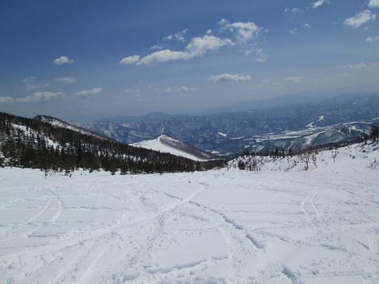 今日も快晴|栂池高原スキー場のクチコミ画像