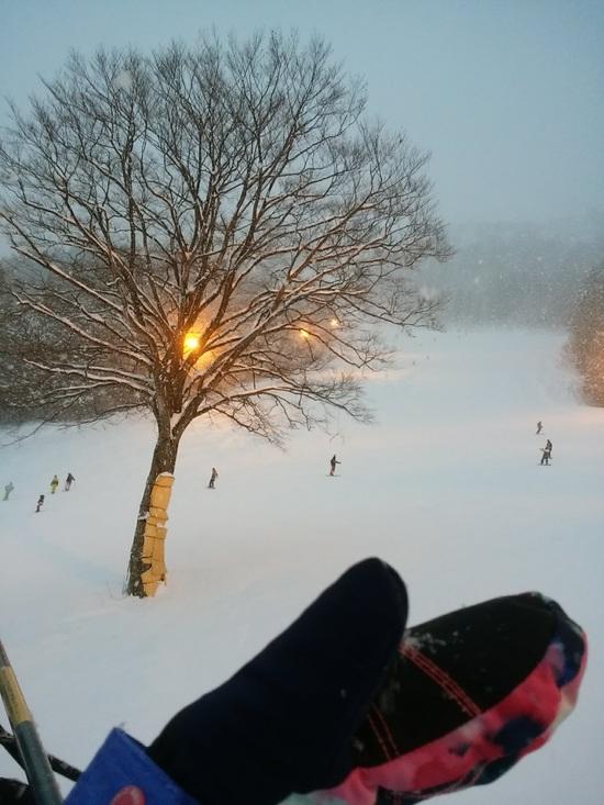 レディスデイが1500円で安い!|神立スノーリゾート(旧 神立高原スキー場)のクチコミ画像