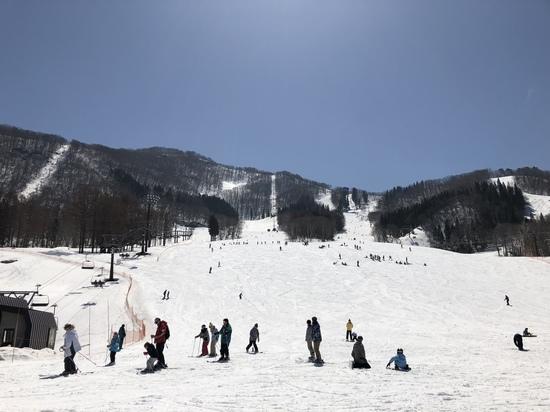 ゲレンデ状況|タングラムスキーサーカスのクチコミ画像