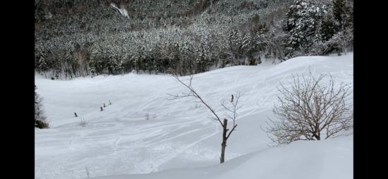 雪質|丸沼高原スキー場のクチコミ画像