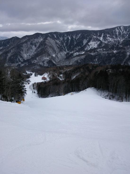 いろいろな斜面が待っている|丸沼高原スキー場のクチコミ画像