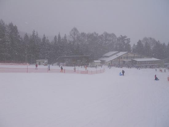 寒い|かたしな高原スキー場のクチコミ画像
