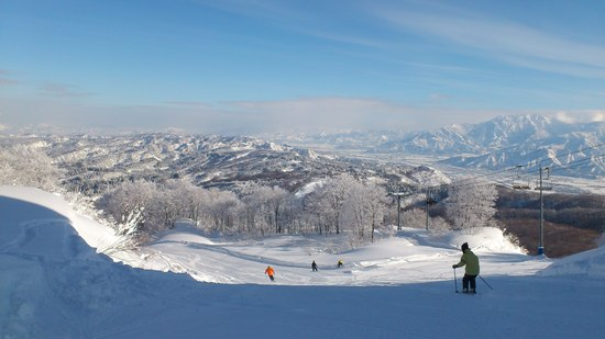 晴天 上越国際スキー場のクチコミ画像