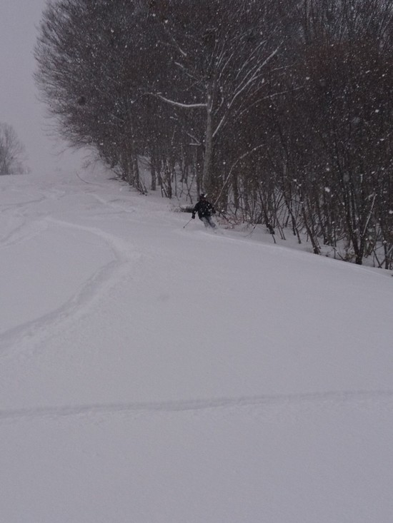 まさかの新雪|会津高原だいくらスキー場のクチコミ画像1