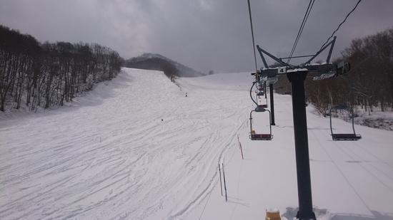 まさかの新雪|会津高原だいくらスキー場のクチコミ画像2