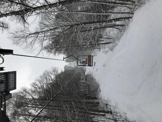 全面オープン! 水上宝台樹スキー場のクチコミ画像2