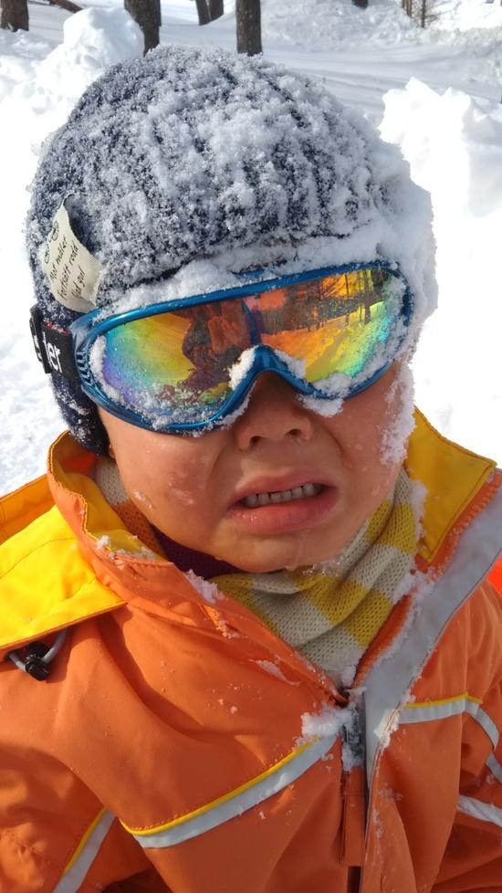 初雪|スノーウェーブパーク白鳥高原のクチコミ画像