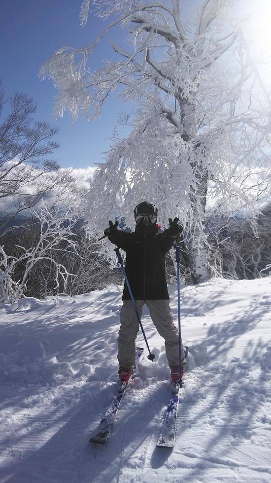 雪がなくても|めいほうスキー場のクチコミ画像