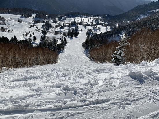 バックカントリーを楽しめるワイルドなスキー場|YAMABOKU ワイルドスノーパークのクチコミ画像1