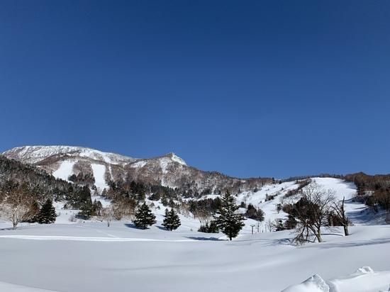 バックカントリーを楽しめるワイルドなスキー場|YAMABOKU ワイルドスノーパークのクチコミ画像2