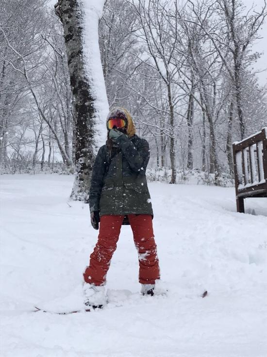 まさかのパウダー?|たんばらスキーパークのクチコミ画像