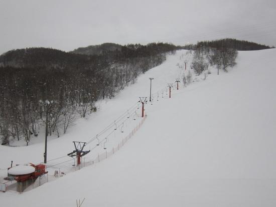 2013/03/01(金) 仁木町民スキー場の速報 仁木町民スキー場のクチコミ画像2