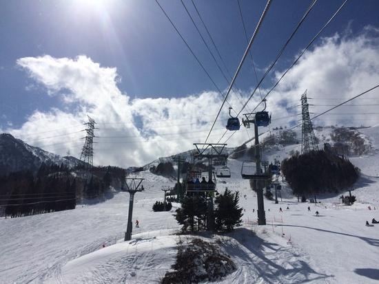 はーやーくコイコイ! オープン日|苗場スキー場のクチコミ画像