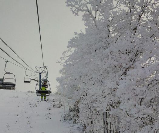 今年は雪が少ない...|カムイスキーリンクスのクチコミ画像